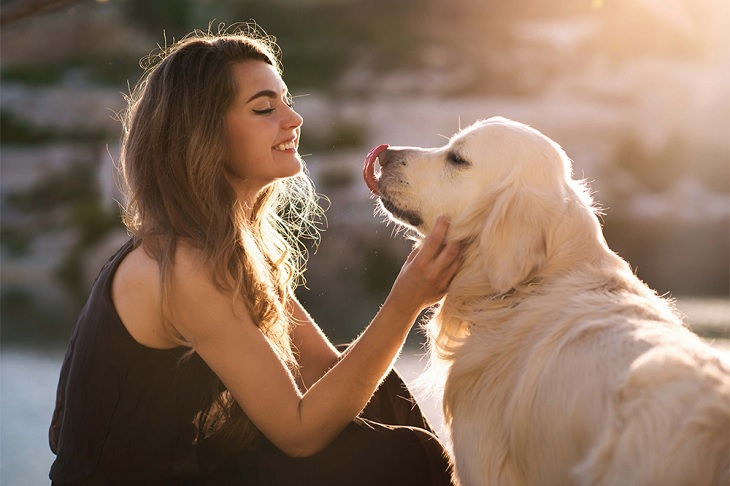 How To Take Care Of Your Pets - Here Are Some Tips